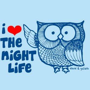 I love the night life owl image